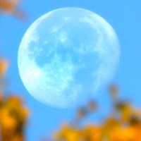 1479331933-super-fall-moon-rkb-masthead.jpg